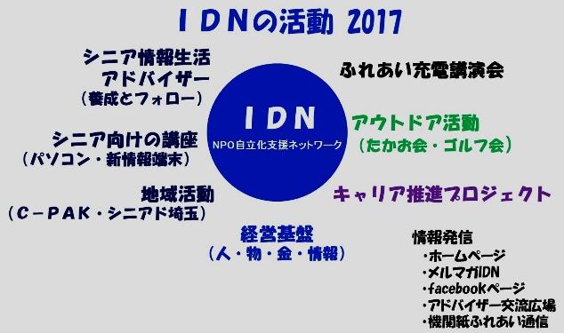 IDNの活動