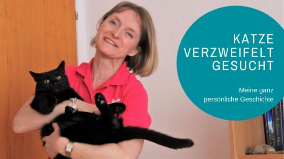 Tierkommunikation: Vermisste Katze verzweifelt gesucht!