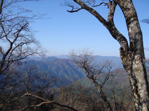 樹間より大峰の山々を望む、快晴!!(写真M内さん)