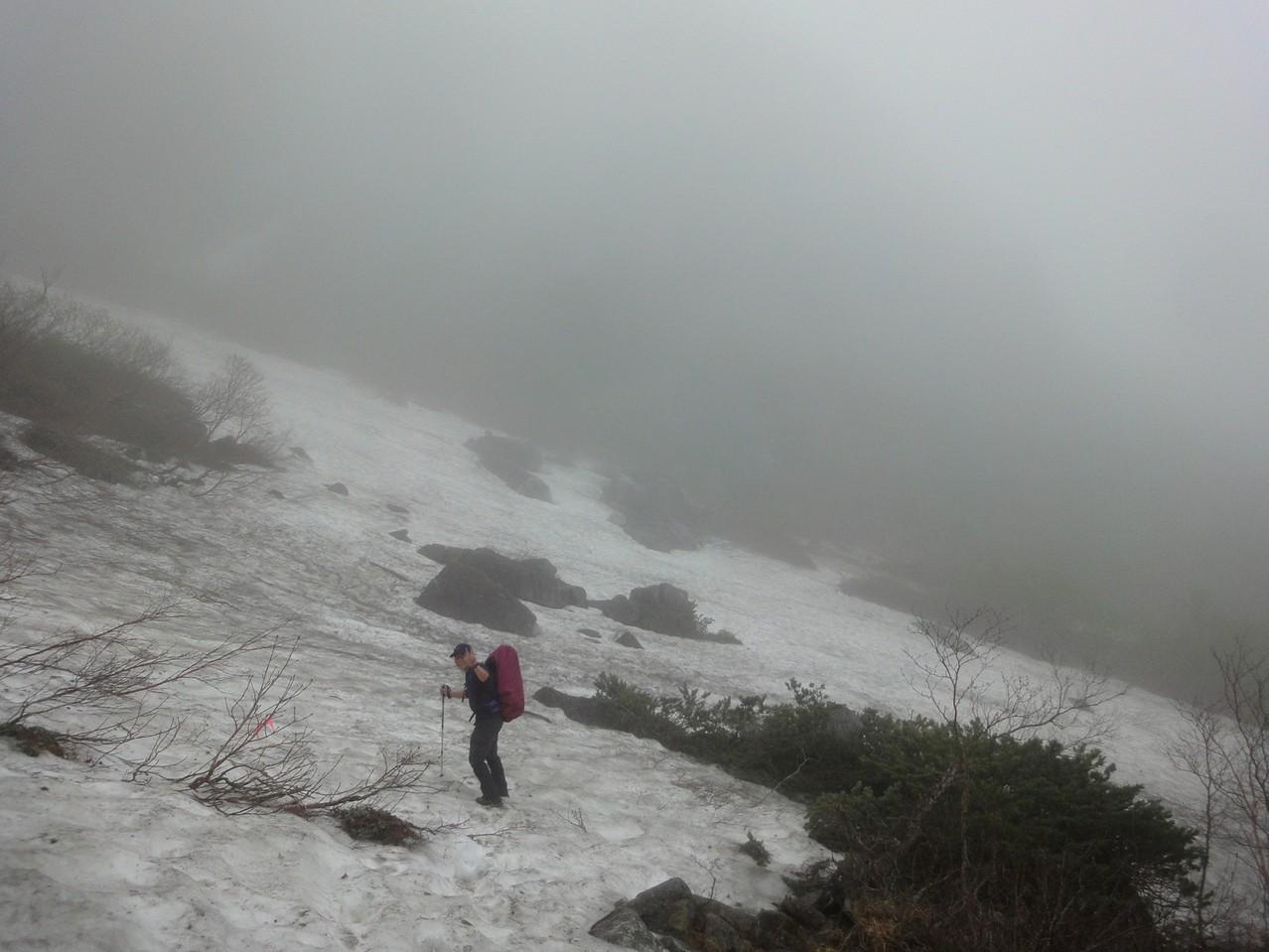 雪渓も残っていました