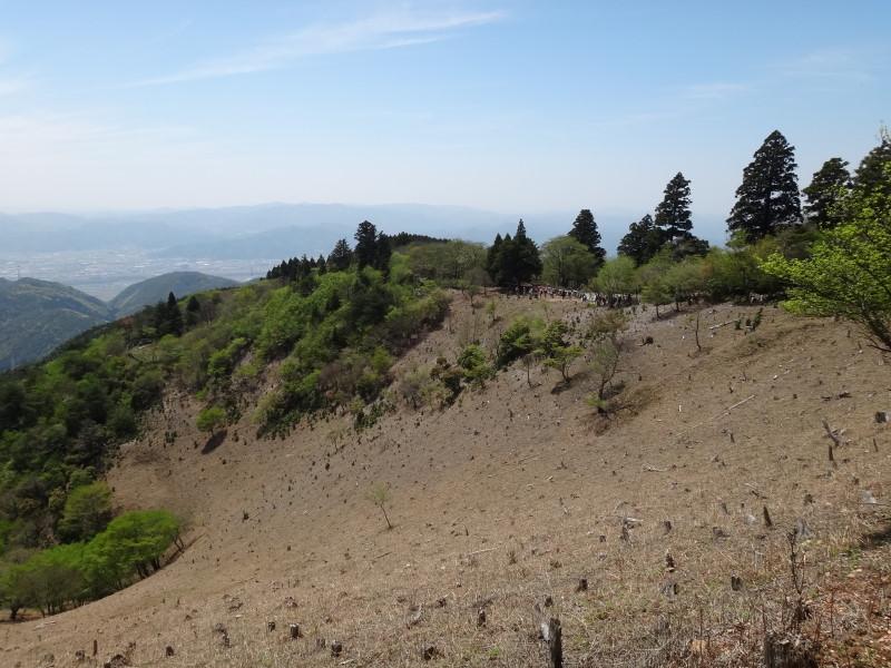 愛宕山から樒原分岐へ