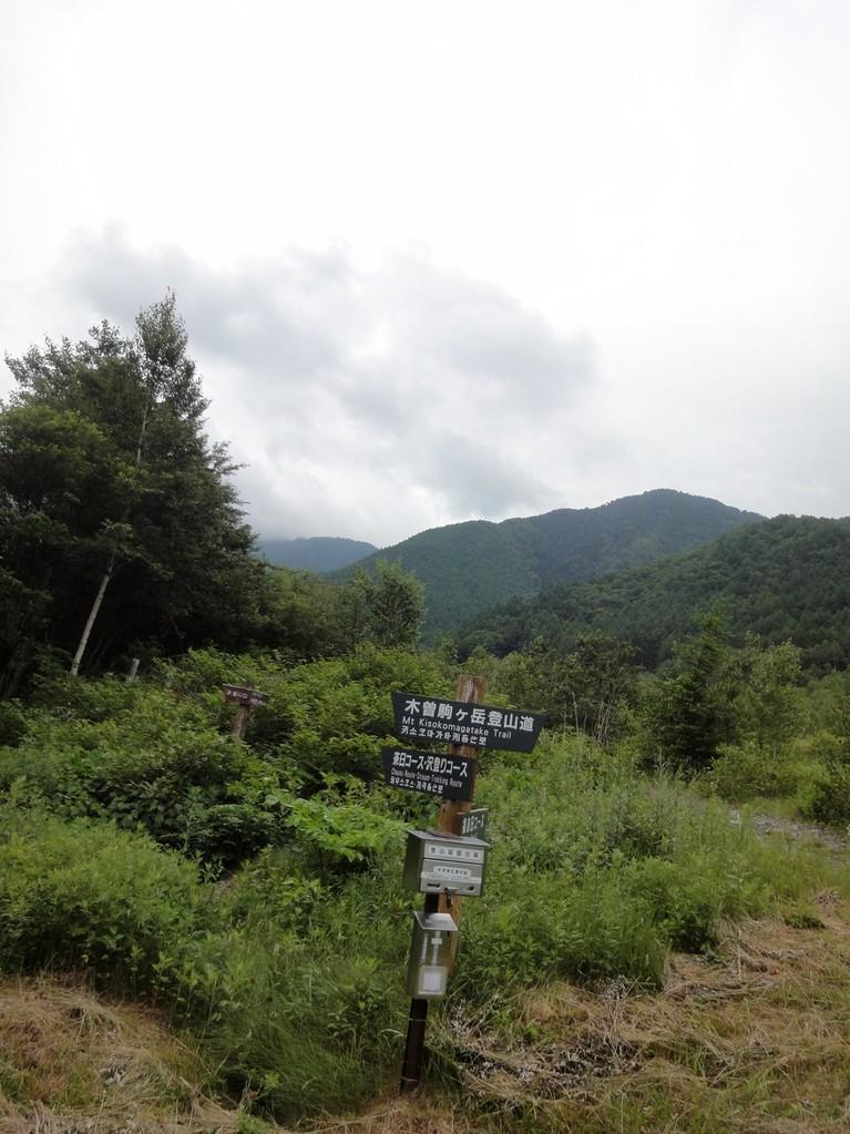 分岐を茶臼山コースへ
