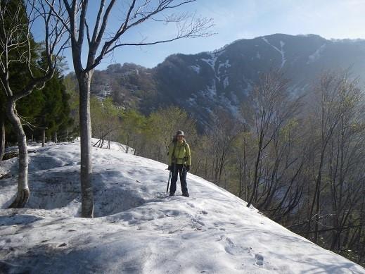 ずっとこんな雪の上ばかり歩けたら楽勝だったのに・・。バックに見えるのが芦倉、雪見えず・・。