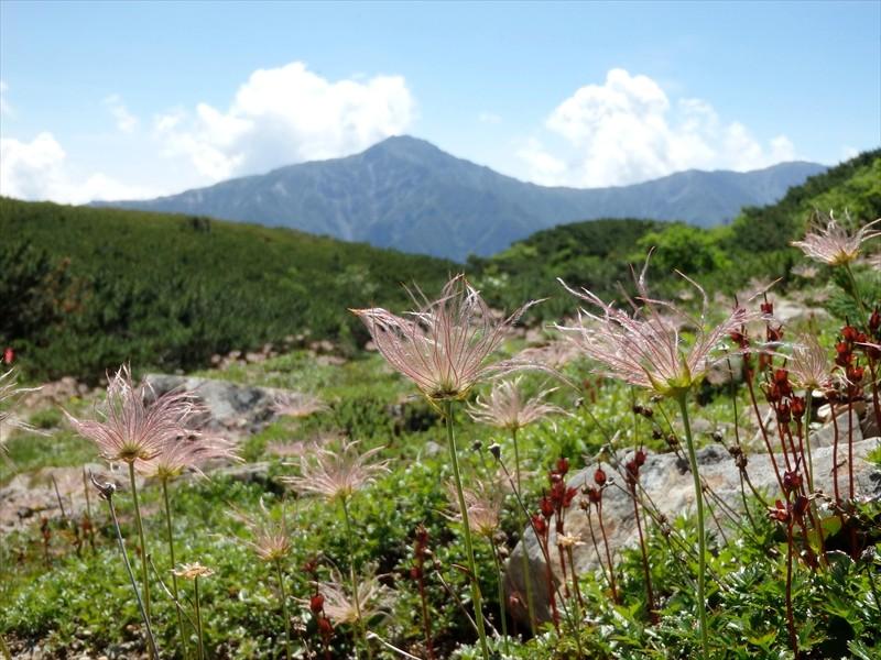 果穂と北岳