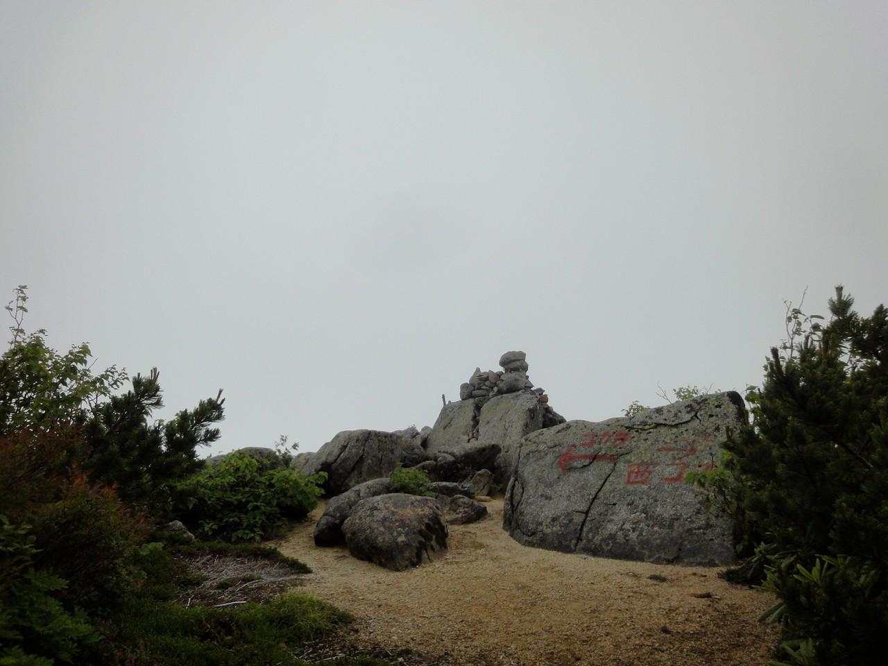 標識ないけど、茶臼山山頂。ここまで誰にもあいませんでした。