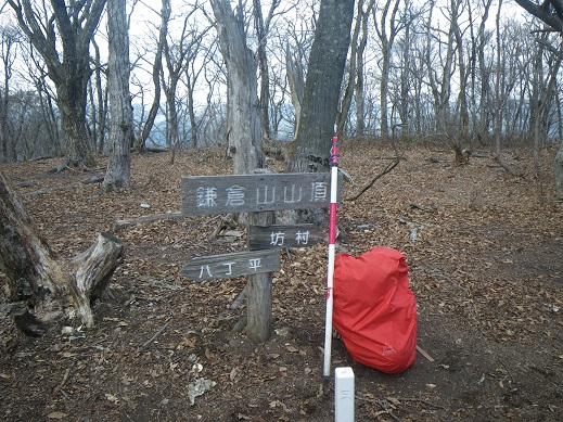 鎌倉谷山頂、ここもササなし,公園状態