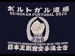 Link Portogallo Seigokan