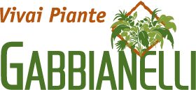 Alberi e piante da frutto. tanti consigli per la coltivazione e vendita