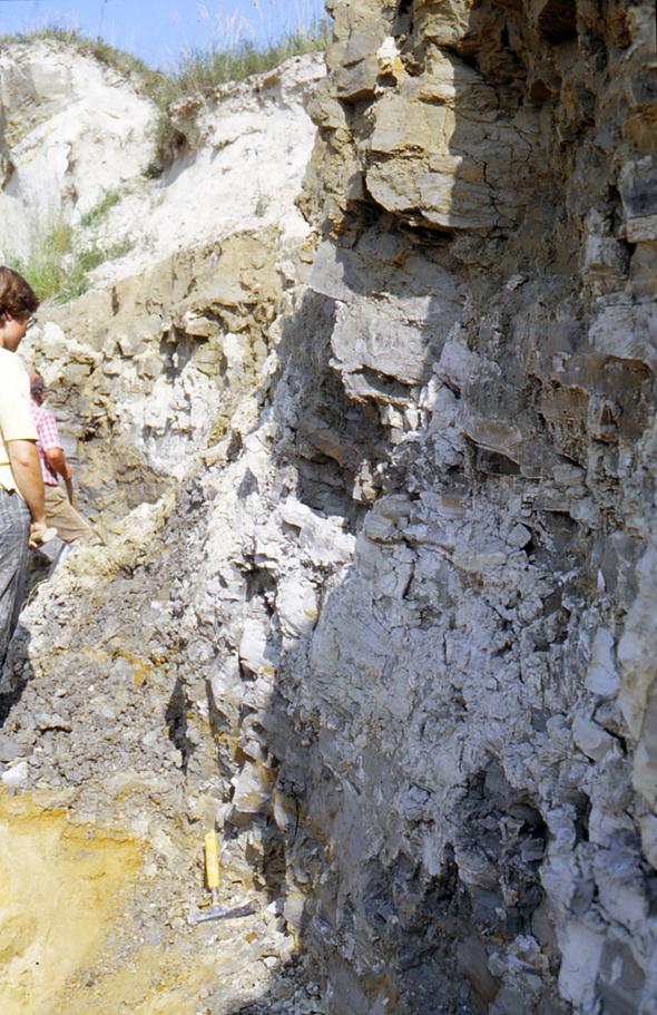"""Abb. 8: """"Historische"""" Aufnahme der bis etwa 3 Meter mächtigen Tonlinse ..."""