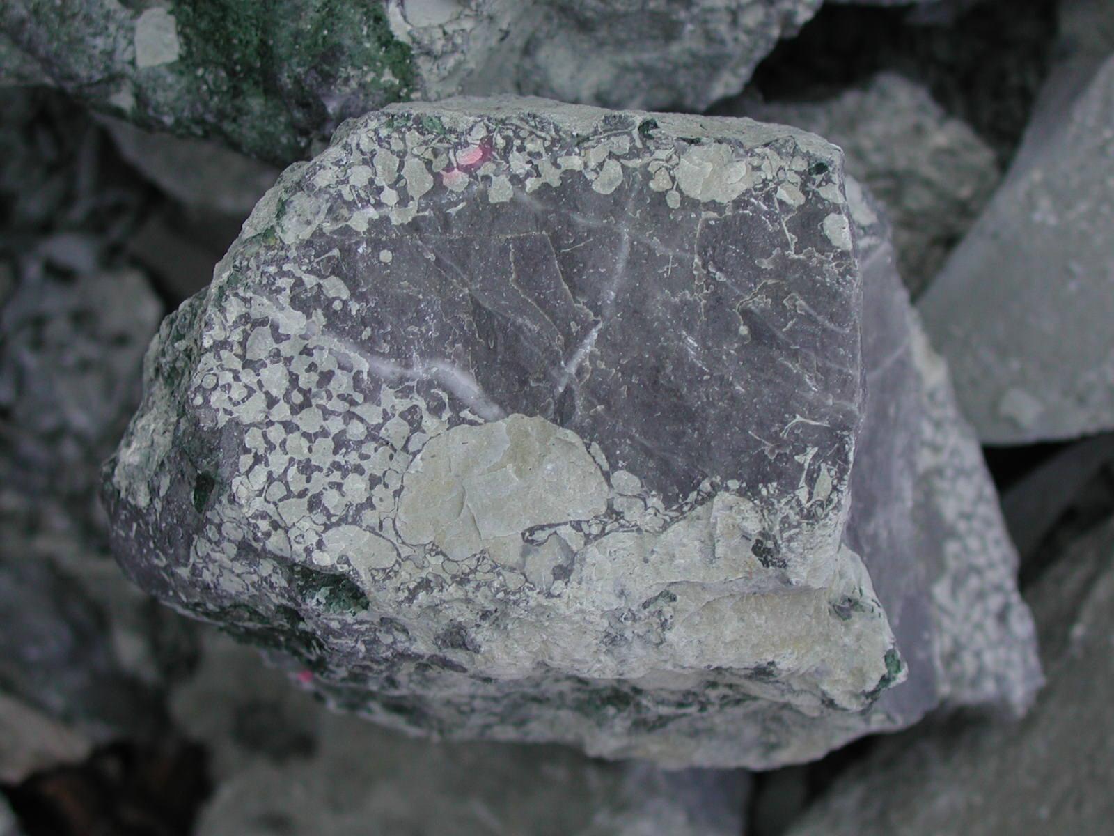 """Bioerodiertes Wettersteinkalk-Geröll; """"Oberer Zementmergel""""; Mergelbruch (Photo Heyng 2003)"""