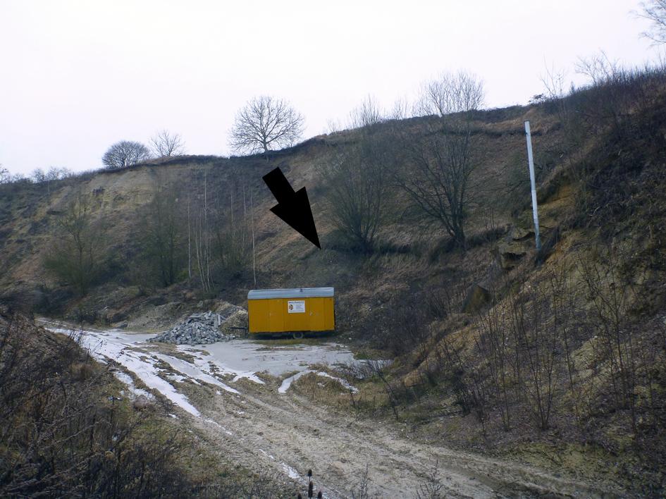 Abb. 3: Stillgelegter nördlicher Bereich der Sandgrube DUMERTH ...