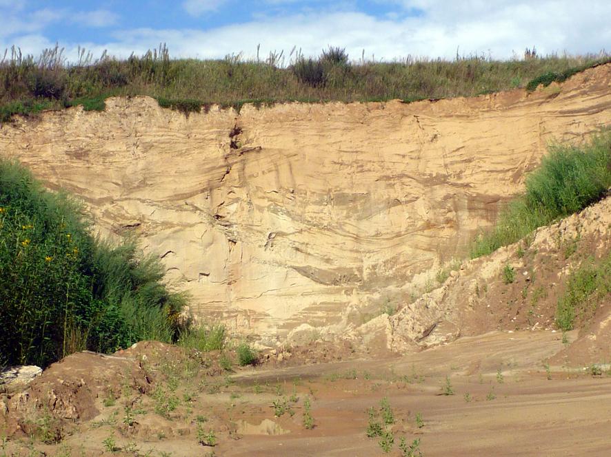 Abb. 3: Nordwand der Sandgrube Antoniberg mit Aufarbeitungslagen.