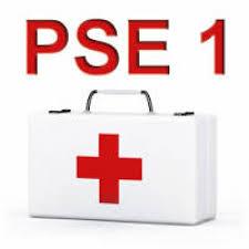 PSE 1 PREMIERS SECOURS EN ÉQUIPE DE NIVEAU 1 - AASS34