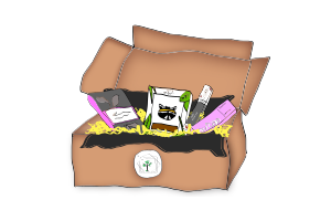 Die vegane Schoko-Box