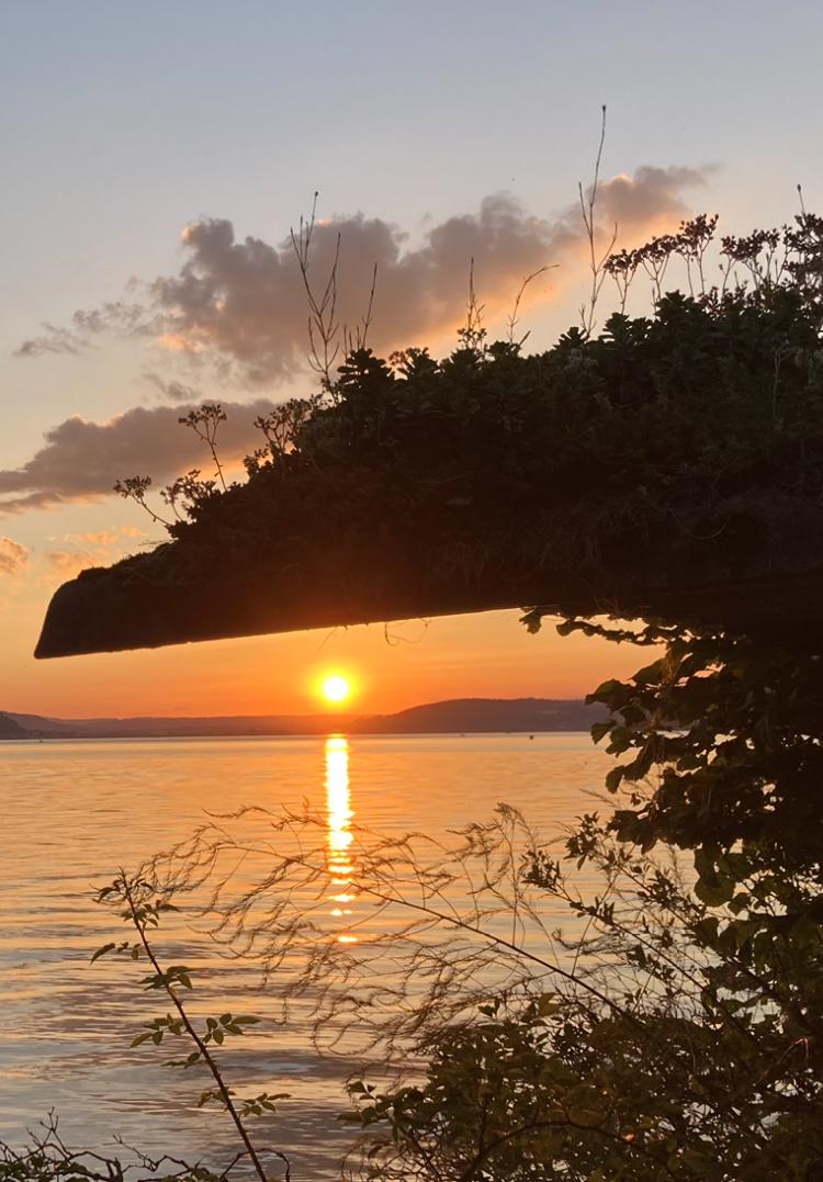Sonnenuntergang zwischen See und begrüntem Schuppendach