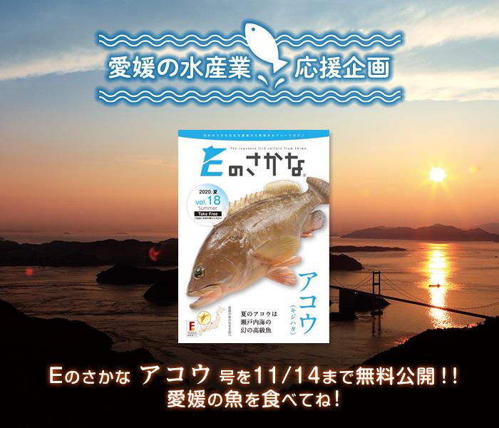 【愛媛の水産業応援企画】Eのさかな アコウ号を11/14まで無料公開!!愛媛の魚を食べてね!