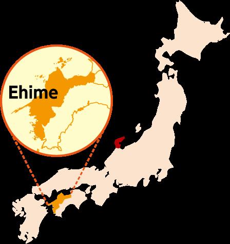 愛媛Ehime