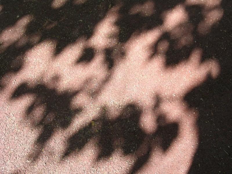 Sombras del patio del colegio