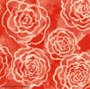 https://www.capsantjordisenserosa.org/ca/roses/
