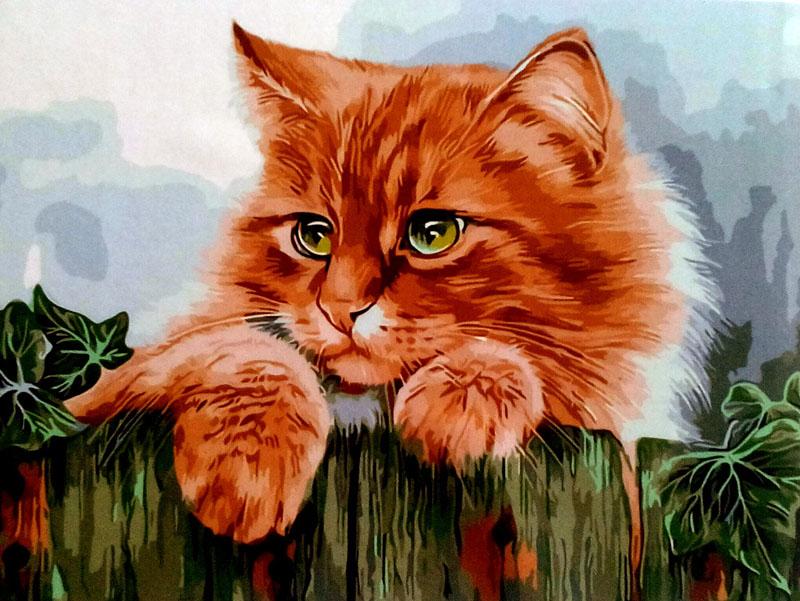 картинки рыжего кота с зелеными глазами мультяшного воспользоваться промокодом, назови