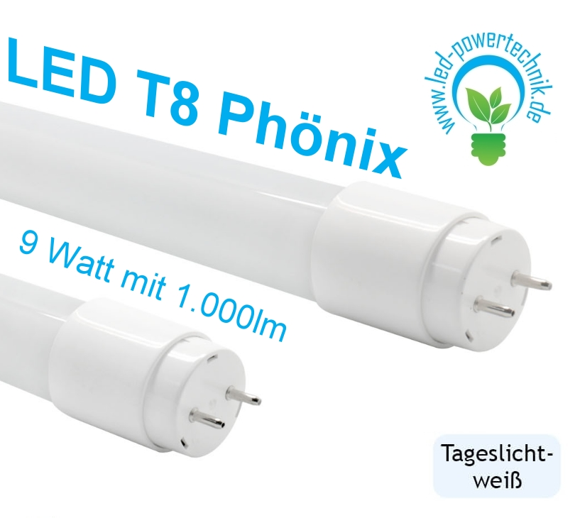 Led t8 g13 r hre ph nix 060cm 9 10w 830 840 865 800 for Bed tech 3000