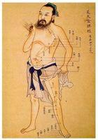 L'acupuncture consistite, grace aux réseaux des méridiens qui courent sur l'ensemble du corps, à puncturer des points spécifiques sur les méridiens afin de faire circuler le Qi (énergie) : retrouver l'équilibre physique, métabolique, psychique, émotionnel