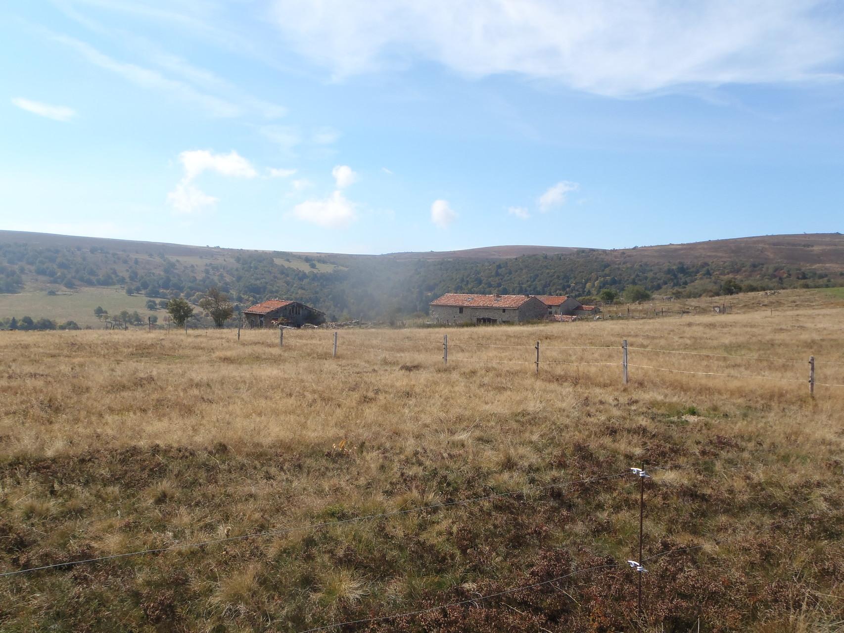 Jasseries de Renat - Plateau de Colleigne