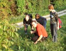 Naturführung Auberg Sept. 2010