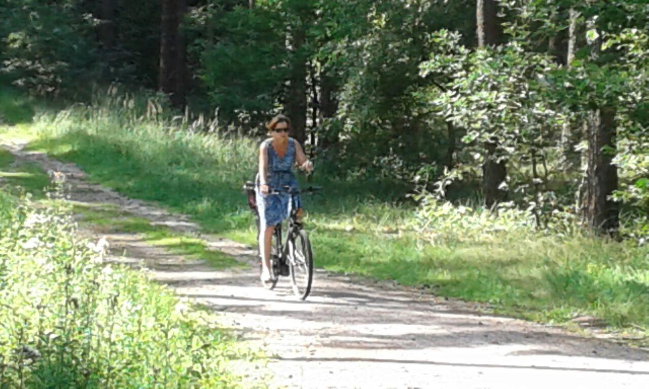 Radtour auf ruhigen Wegen