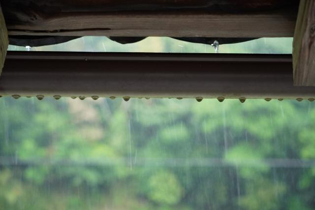 梅雨空ですね