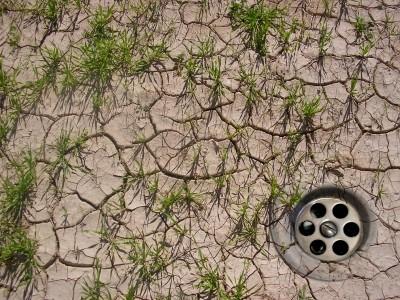 Klimawandel/Dürre