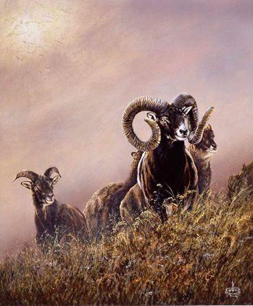 Gemälde Muffelwild