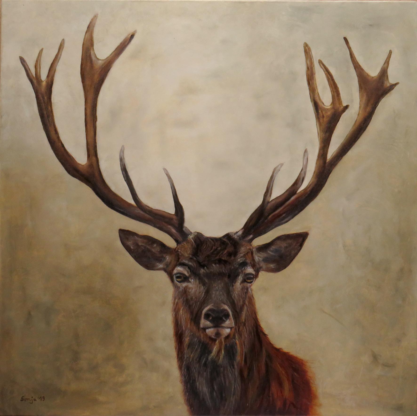 """Hirsch"", Öl auf Leinwand, 80 x 80 cm"