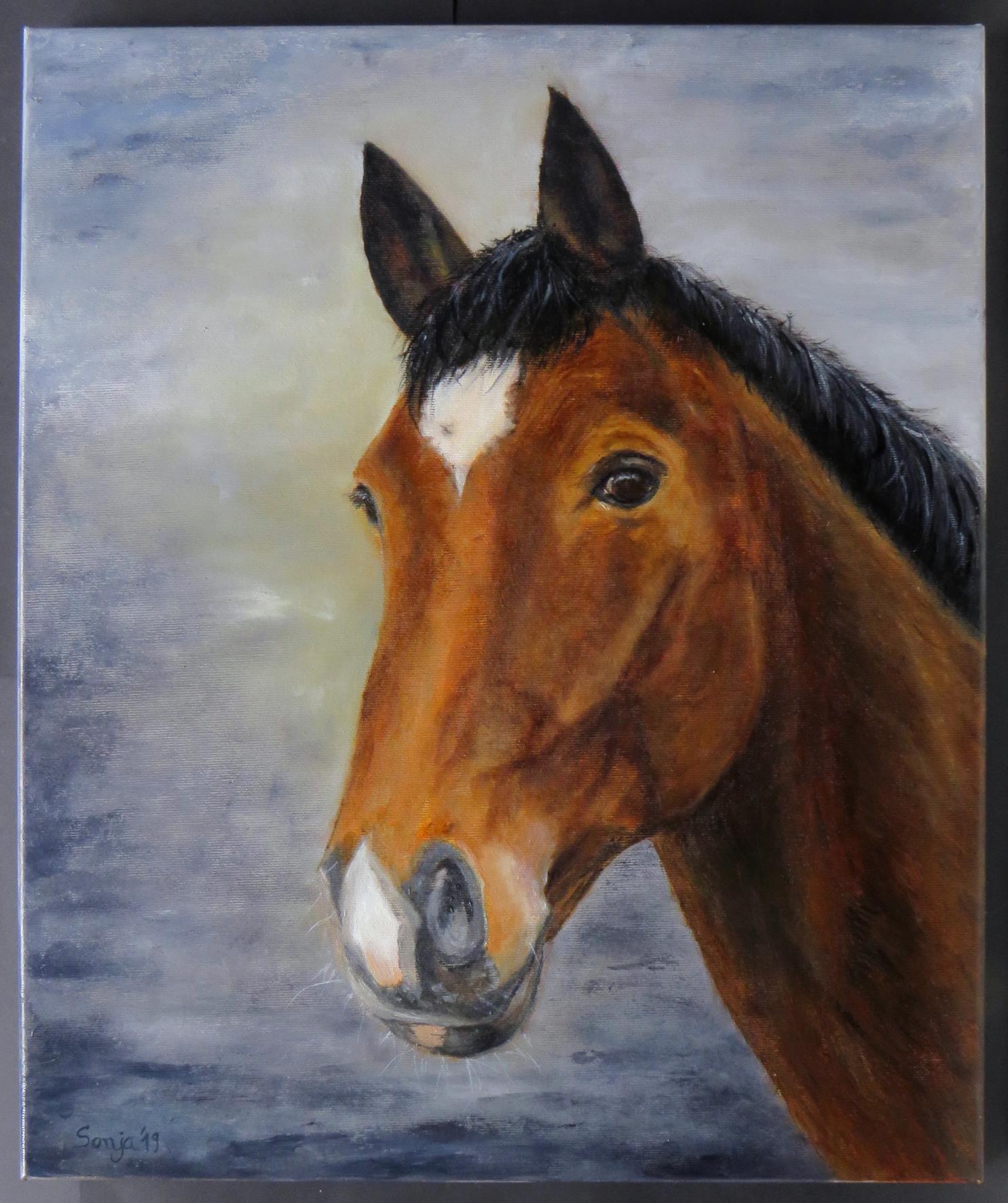 """""""Stakko"""", Öl auf Leinwand, 50 x 60 cm"""