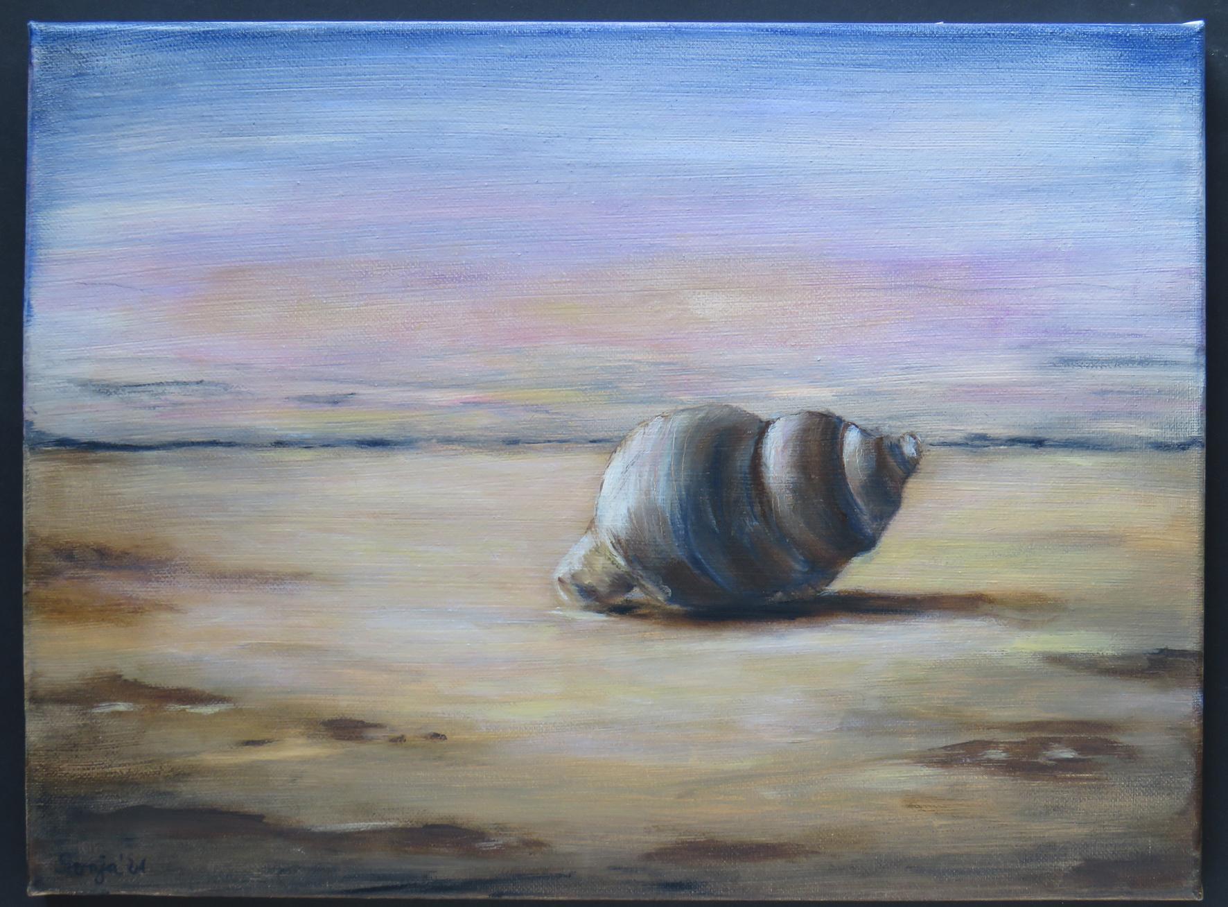 """""""Wellhornschnecke"""", Öl auf Leinwand, 30 x 40 cm"""
