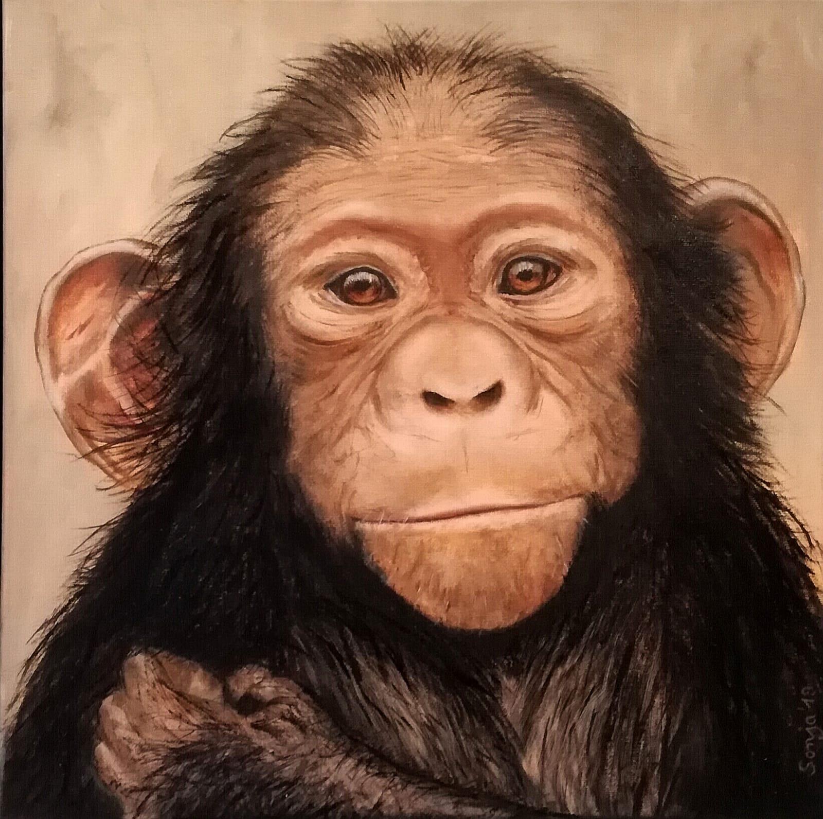"""""""Kleiner Schimpanse"""", Öl auf Leinwand, 40 x 40 cm"""