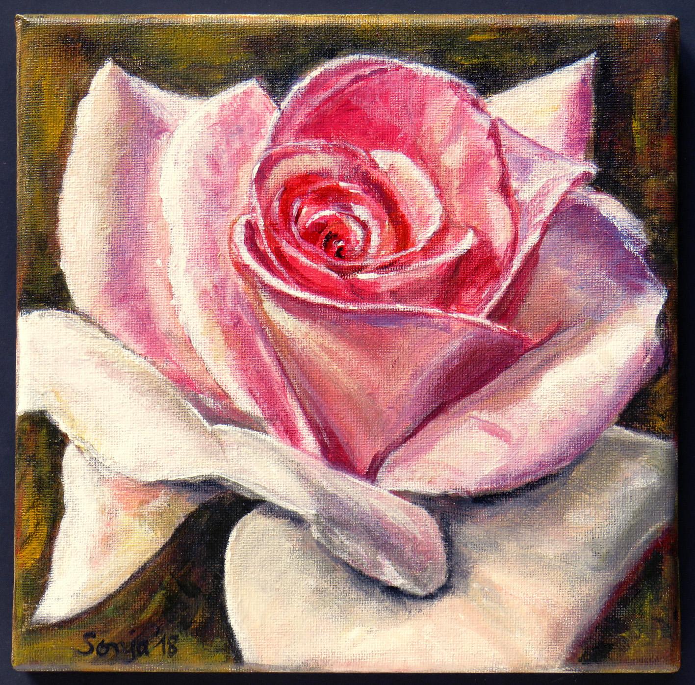 """""""Rosenblüte"""", Acryl auf Leinwand, 20 x 20 cm"""