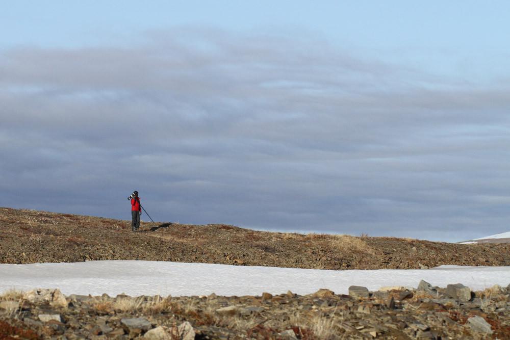 Nome - Hilltop on TellerRoad - Alaska 2013