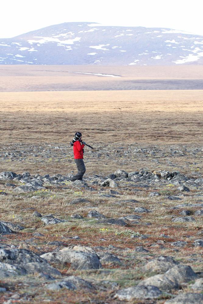 Nome - TellerRoad - Alaska 2013