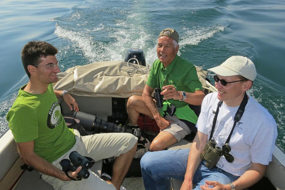 Mit den Kollegen der Falkenraubmöwe nachjagend - Bodensee 2012