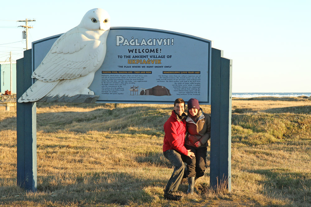 Barrow - Where they hunt Snowy Owl - Alaska 2013