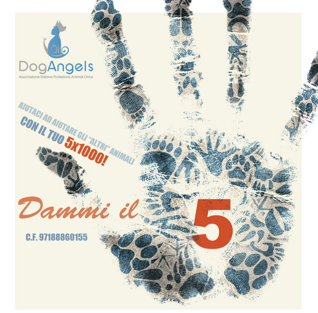 5 per mille animali Dog Angels