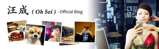 汪成ブログ
