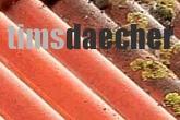 Tims Dächer Dachrinnenreinigung
