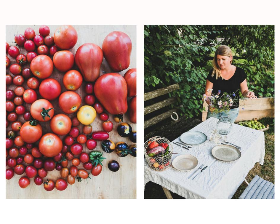 alte tomatensorten bilder