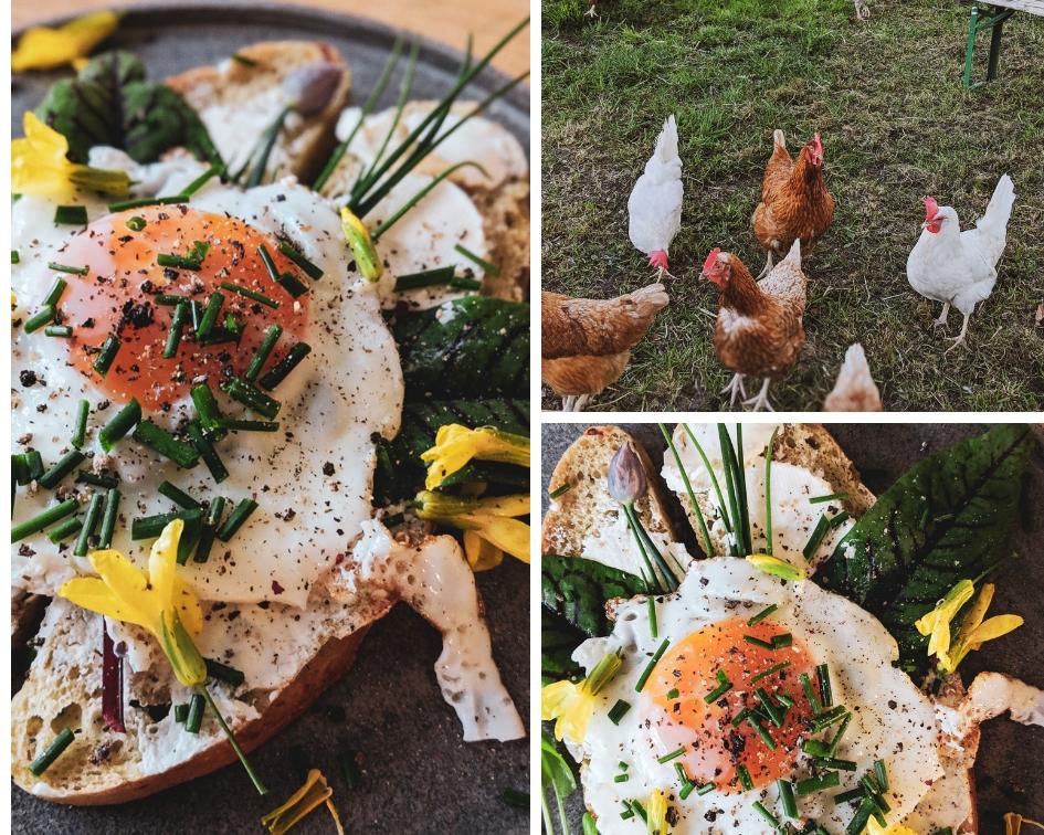 Ein schnelles und leckeres Gartenfrühstück.