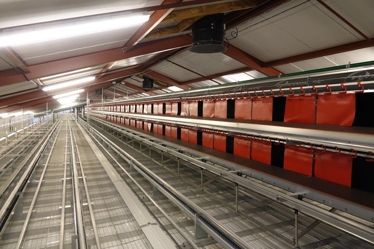 Le bâtiment de production d'oeufs alternatifs plein air, codés 1, est de type volière.