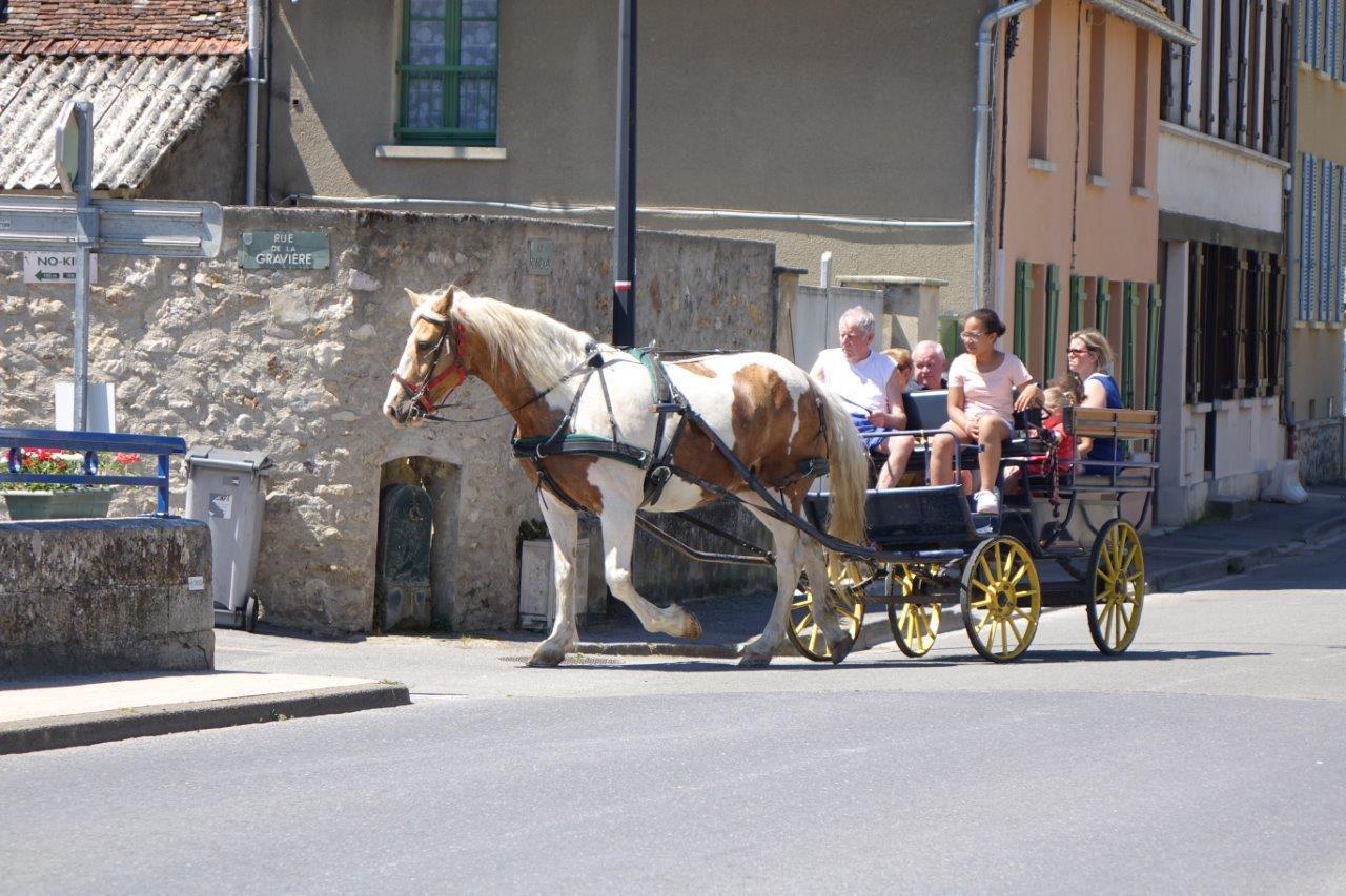 Edgar Vervaet, maire du village voisin de Montlevon et son attelage, ne ratent jamais les portes ouvertes.