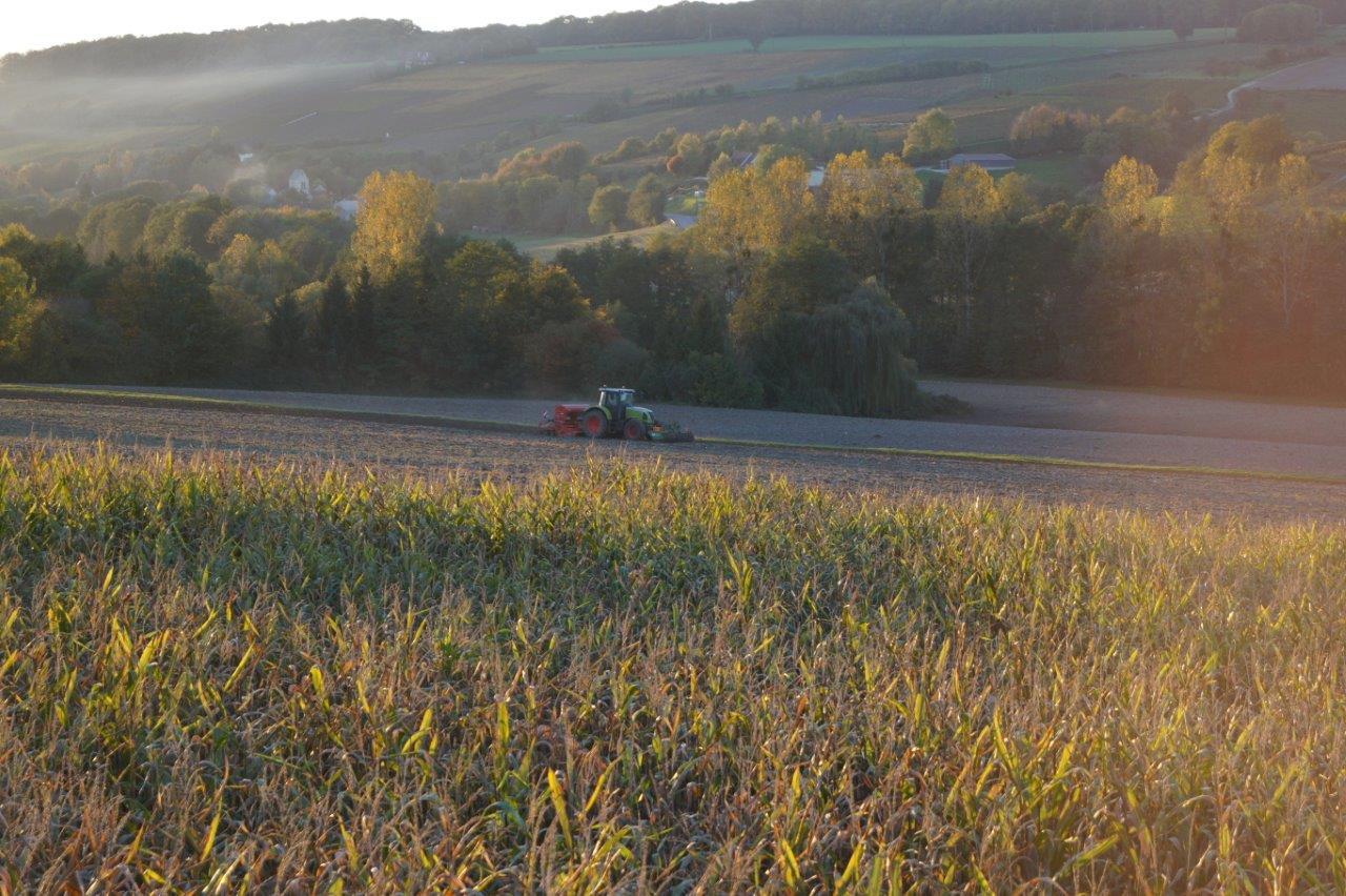 Par une belle journée d'automne, les agriculteurs du territoire sèment jusqu'au bout de la nuit.