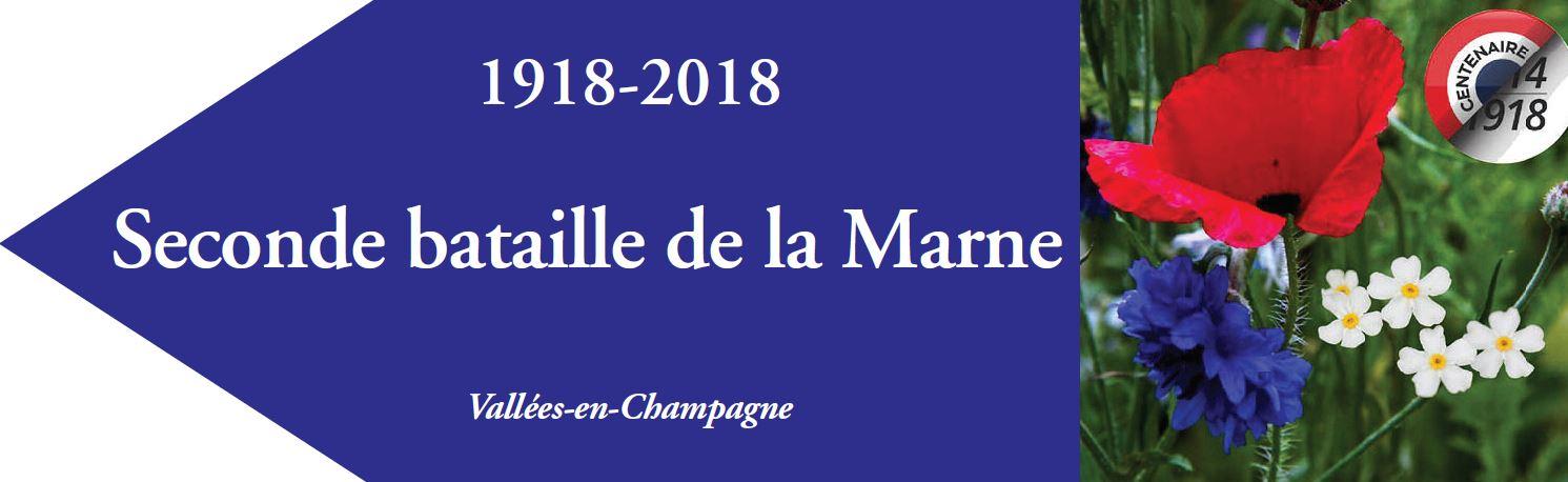 Les fleurs symboliques du souvenir : le bleuet pour les Français...